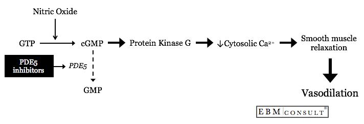 Nitroglycerine and Type 5 Phosphodiesterase Inhibitor Drug Interaction and Hypotension