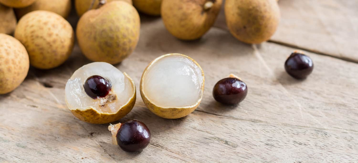 Longan Fruit Nutrition Facts, Health Benefits and Uses - Dr. Axe